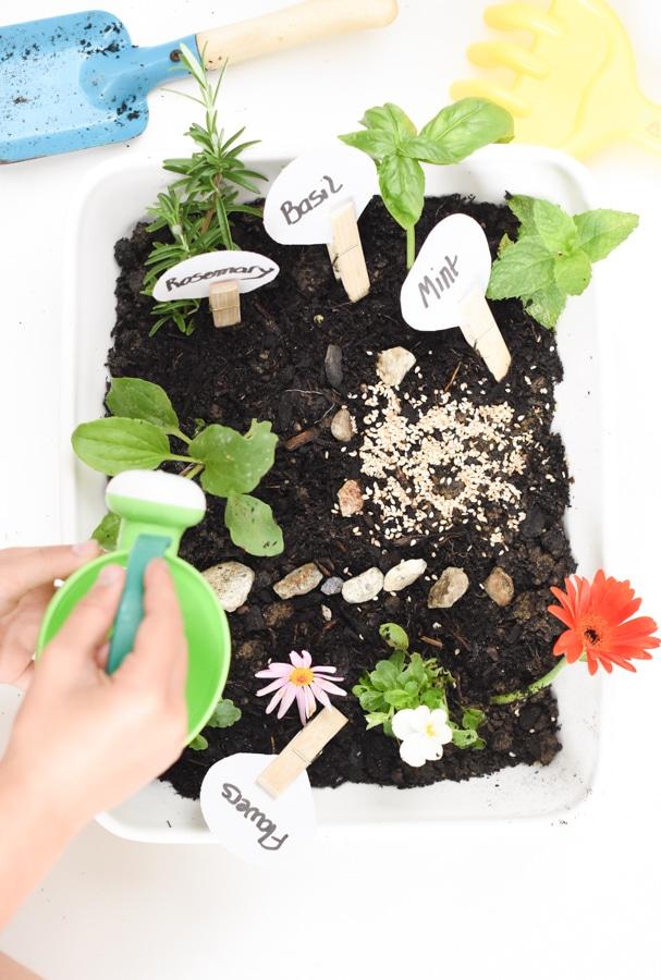 Garden sensory bin for kids