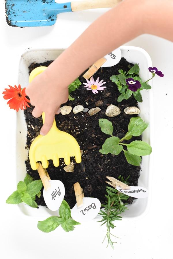 How to make garden sensory bin