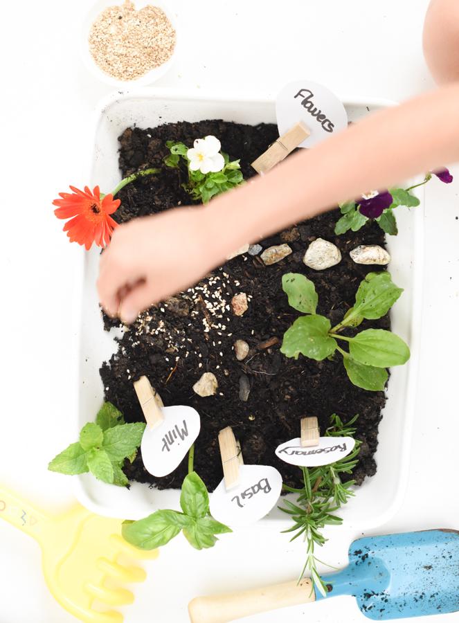 Toddler Garden sensory bin